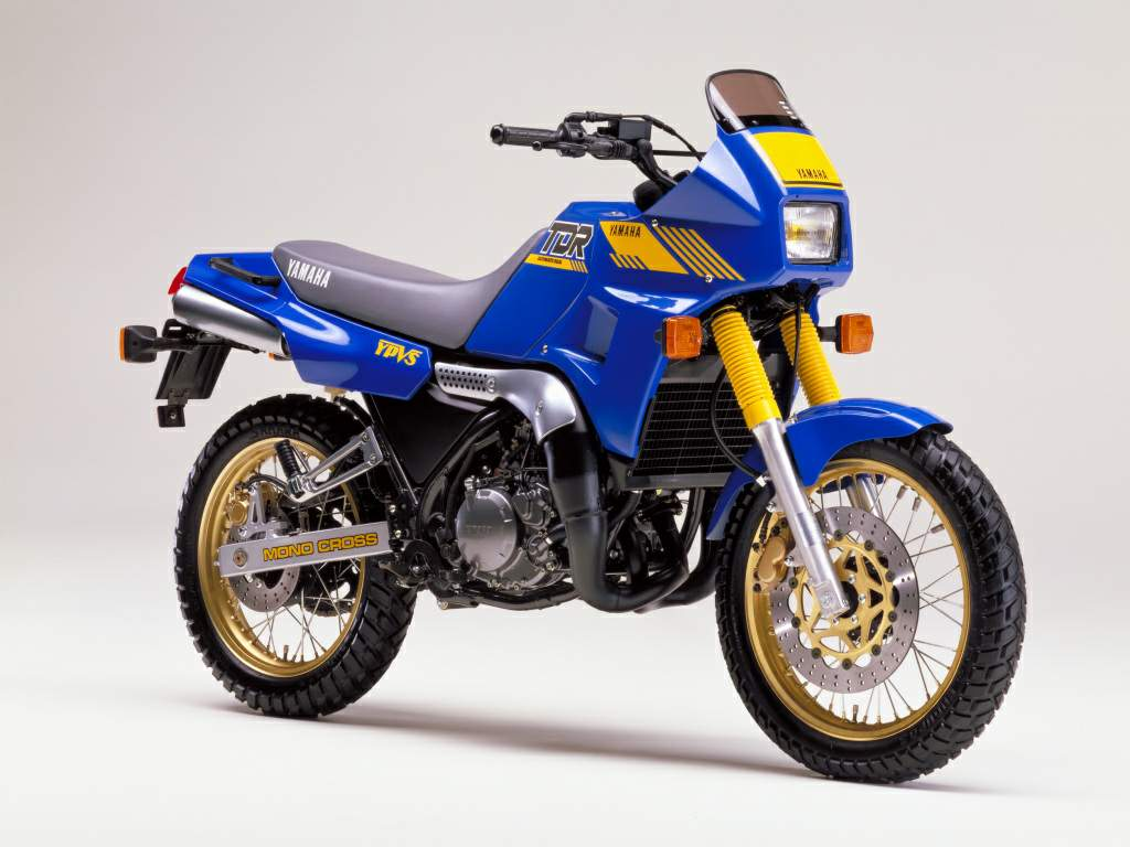 The 1988 Yamaha TDR250